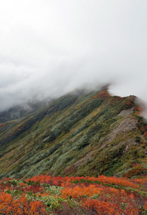 Over the great ridge